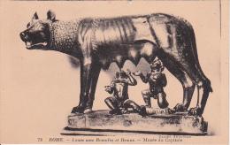 PC Rome - Louve Avec Romulus Et Remus - Musée Du Capitol (0900) - Musées