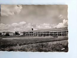 Carte postale ancienne : CASTELNAUD RIVIERE BASSE : Le Pr�ventorium en 1959