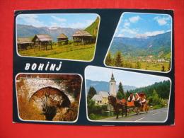 BOHINJ - Slovénie