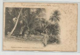 Cpa  Guadeloupe  Pointe-à-Pitre Cueillette De Cocos Vendu Par Les Magasins Au Bon Marché Edit E.Dolivet Paris - Pointe A Pitre