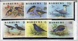 Serie Nº 251/56  Pajaros   Barbuda - Birds