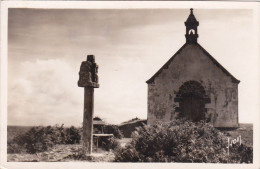 Cp , 56 , CARNAC , Le Tumulus St-Michel - Carnac