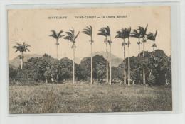 CPA   Guadeloupe  Saint Claude Le Champ Barolet - Pointe A Pitre