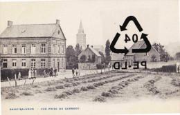 SAINT SAUVEUR - Vue Prise Du Quesnoy - Frasnes-lez-Anvaing