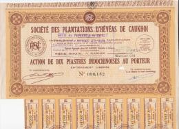 LOT DE 30 ACTIONS INDOCHINOISES- SOCIETE DES PLANTATIONS D´HEVEAS DE CAUKHOI  -1948 - Mines