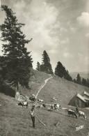 PostkaartZwitserland  B508  La Vallée De Munster - Ohne Zuordnung