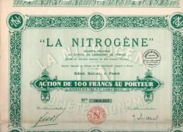 """""""LA NITROGENE"""" ACTION DE 100 FRANCS AU PORTEUR-18-121928 - Industrie"""