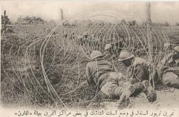 CPA Sous-titrée En Arabe - Centre D'instruction De Troupes Sénégalaises - Exercice De Pose De Fils De Fer - Guerra 1914-18