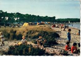 85----ILE DE NOIRMOUTIER----camping Club De France---voir 2 Scans - Ile De Noirmoutier