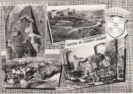 79 - CHATEAU DE COUDRAY SALBART / MULTIVUES - Autres Communes