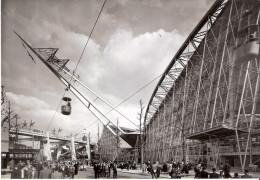 EXPO 58 Bruxelles - Le Pavillon De La France - Exhibitions