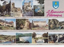 Cp , 42 , ROANNE , Souvenir Du Roannais , Multi-Vues - Roanne
