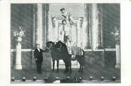 CIRQUE - NUMERO - CHEVAL - FORCE - NAIN - - Circus