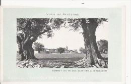 VUES DE PALESTINE SOMMET DU MONT DES OLIVIERS A JERUSALEM - Palästina