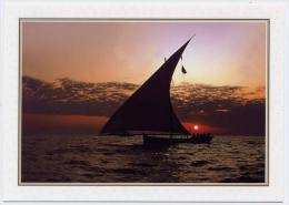 Carte Postale Moderne Non écrite E.A.U - Bateau De Pêche - Emirats Arabes Unis