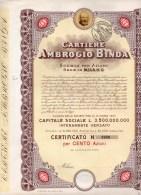 CARTIERE AMBROGIO BINDA-MILANO-CERTIFICATO  N.5950-PER CENTO AZIONI - Industrie