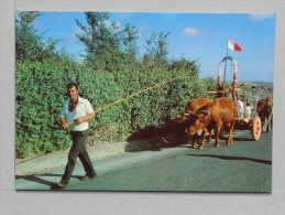 SANTA MARIA - CARRO DE BOIS - 2 Scans (Nº05204) - Açores