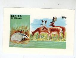 ECOSSE , STAFFA , SCOTLAND ,ANIMAUX - Regionali