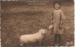 L'Auvergne Humoristique - Jeune Nourrisson Auvergnat - Humour