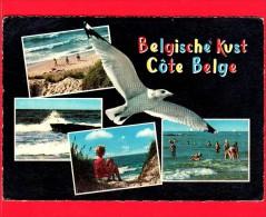 BELGIO - Cartolina Viaggiata Nrl 1966 - Costa Belga - Vedute - Belgio