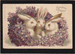 *Fantaisie Kitsch - Gaufrage - Paques - Lapins  Relief - Pâques