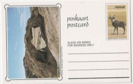 SWA Postcard 1980 Landschaft Kudu - Neufs