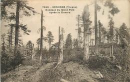 88 SENONES Sommet Du Mont Pelé Après La Guerre CPA Ed. C. Lardier Besançon N°7243 - Senones