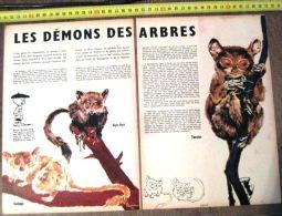 DOCUMENT ANIMALIER ILLUSTRE PAR RENE DEMON DES ARBRES AYE AYE GALAGO TARSIER BENOIT BRISEFER - Old Paper