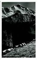 Die Jungfrau  - Moutons - BE Berne
