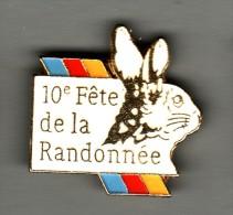 PIN´S  DESVRES - 10° Fête De La Randonnée + Lapin - Lièvre - Villes