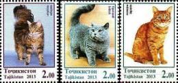Tajikistan 2013 Domestic Cats 3 V MNH - Tajikistan