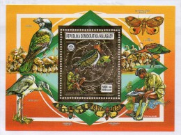 Hb De  Pajaros Madagascar. - Birds