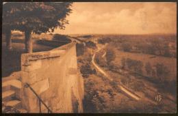 331 - MAILLY LE CHATEAU (Yonne).- La Terrasse. - France