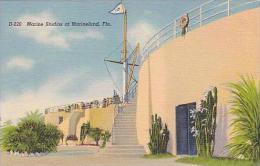 Florida Marineland Marine Studios Curteich