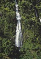 Ile De La Réunion,ile Française,outre Mer,archipel Des Mascareignes,océan Indien,ROUTE HELL BOURG,CASCADE,FORET,JUNGL E - La Réunion