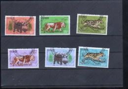 SELLOS DE GUINEA - Big Cats (cats Of Prey)