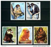 SHARJAH  5 Tsinges - Monkeys