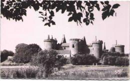 PENVINS-SARZEAU - Château De Suscinio - Sarzeau