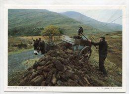 IRELAND - AK 190499 County Mayo - Doo Lough Pass