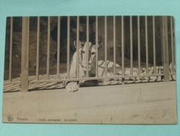 Jardin Zoologique La Lionne ( Leeuw ) Anno 19?? ( Zie/voir Foto Voor Details ) !! - Antwerpen