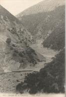Algérie - Gorges De La Chiffa - Algeria