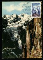 A2596) France Frankreich Maximumkarte Mi.1520 Ersttag 17.07.1965 - Maximum Cards