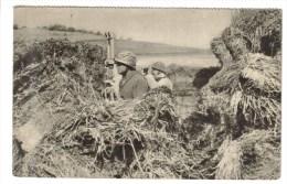 CPSM MILITAIRE MATERIEL GUERRE DE 1939-45 - Aux Manoeuvres : Observatoire D´infanterie - Guerra 1939-45