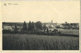 Attert :  Panorama ( Ecrit Avec Timbre ) - Attert