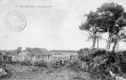 CPA  -   GRANVILLE -  ILES  CHAUSEY  (50)   Un Coin De L' Ile   -  Cachet De L' Hotel Des Iles - Granville