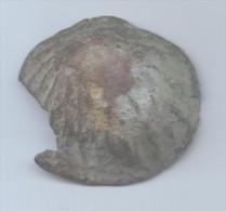 Aes Formatum /coquillage Osco-latin, Italie Centrale, 320-280 - 1. République (-280 à -27)