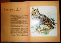 DOCUMENT ANIMALIER OISEAU JOLIMENT ILLUSTRE LE MOYEN DUC - Old Paper