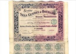 Société Des Sels Gemmes & Houilles De La Russie Méridionale - Autres