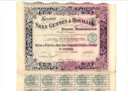Société Des Sels Gemmes & Houilles De La Russie Méridionale - Actions & Titres