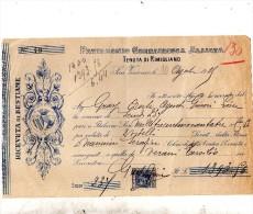 1919 TENUTA DI RIMIGLIANO RICEVUTA DI BESTIAME - Italia